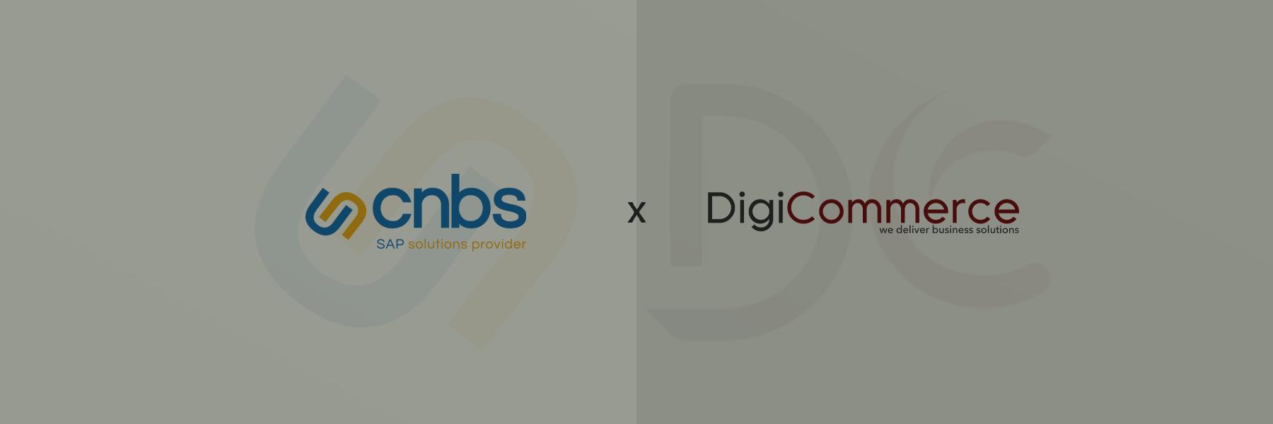 DigiCommerce Partnership